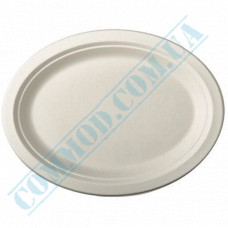 Paper plates made of sugar cane (bagasse) 320*260mm oval white 125 pieces per pack