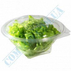 Plastic PET transparent containers 750ml 172*75*94mm for salad with a transparent hinged lid 50 pieces