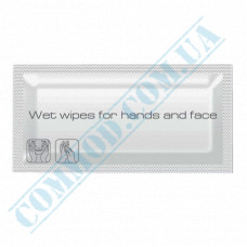 Antibacterial wet wipes individually wrapped in a box 600 pieces PRO Service