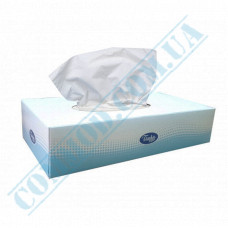 Cosmetic wipes 2-ply 22.5*19.5cm paper in box 100 pieces per pack Tischa